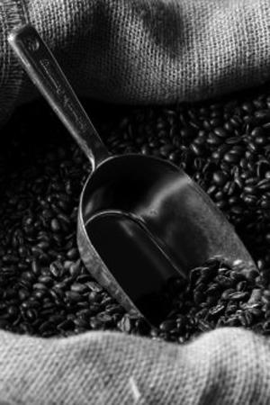 le café du caracaf